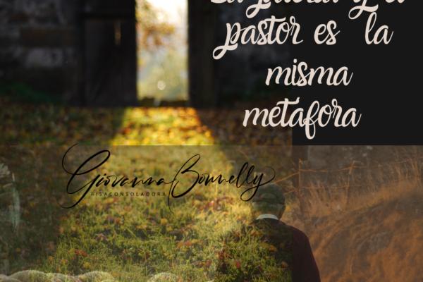 Jesús viene a comunicar Vida, la misma de Dios