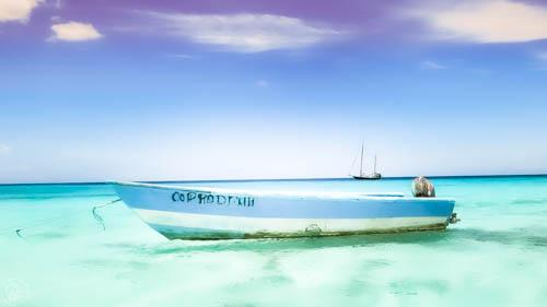 En esta Barca